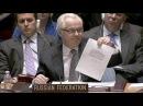 Виталий Чуркин: Задействовать войска РФ на Украине просил Янукович