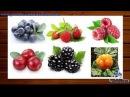Учим слова Лесные ягоды Развивающий мультфильм из серии учим ягоды и фрукты для детей от 2 лет