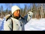 Охота на тетерева и глухаря | Охота и рыбалка в Якутии