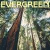Студия звукозаписи Evergreen