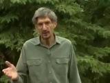 Дом. Деревянный дом за 7 дней Фильм № 1,2,3 ( Обзор ) Full Movie