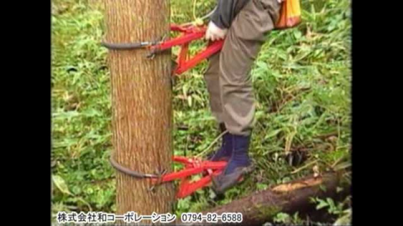 木登り器 与作 Climb a Tree