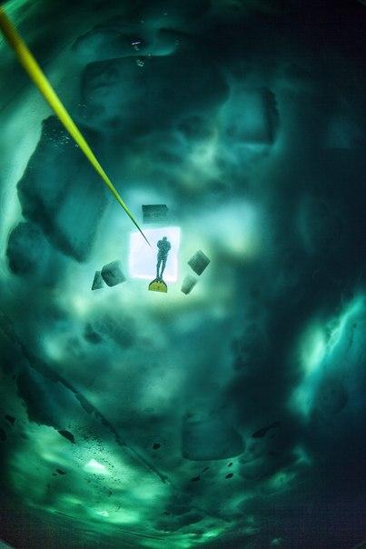 Андрей Сидоров, автор фото: «В этом году состоялась уникальная экспедиция фридайверов на Северный Полюс, во время которой, 13 апреля в точке географического Северного полюса Земли был установлен мировой рекорд по глубине погружения под лед. Россиянин Новиков Константин достиг глубины 65 метров на задержке дыхания».