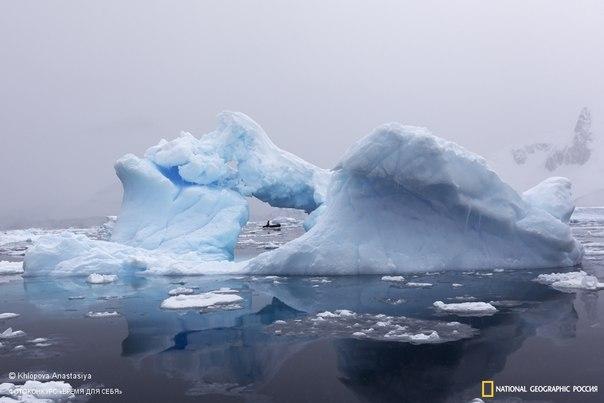 Анастасия Хлопова, автор фото: «Антарктика - это то место, куда можно сбежать от суеты больших городов. Где пространство безгранично, а времени так много, что его невозможно измерить в привычных для нас единицах. И все это время - только для тебя!» Смотрите работы участников фотоконкурса «Время для себя» и загружайте свои