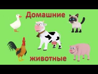 Презентации для детей 3D: Домашние животные. Голоса животных. Мультики для самых маленьких