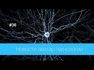 #36 Новости аватар-технологий / Цифровая реконструкция мозга крысы, Нобелевская премия по химии 2015
