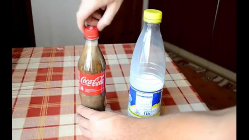 Кока коланын курты