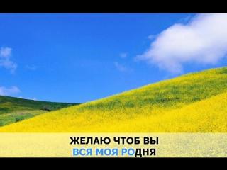 «Желаю», Ваенга Елена_ караоке и текст песни