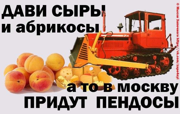Экспорт продовольствия из ЕС вырос, несмотря на российские акции по уничтожению продуктов - Цензор.НЕТ 5306