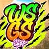 WSGS SURF SHOP | Доски для серфинга