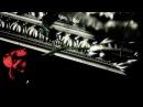 Six Feet Under Open Coffin Orgy (OFFICIAL VIDEO)