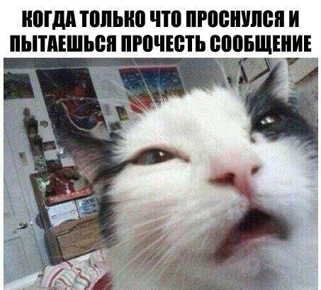 http://cs623320.vk.me/v623320211/185af/6FpG9JXrWXw.jpg