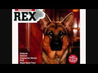 Kommissar Rex ( Soundtrack - Kathy Sampson - A Good Friend