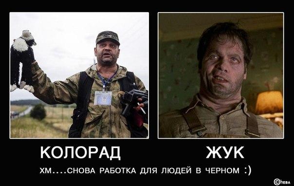 Контактная группа по Донбассу призвала ОБСЕ расследовать нарушения боевиками режима прекращения огня - Цензор.НЕТ 3137