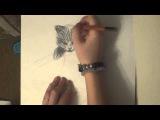 Как рисовать кошку или котёнка - YouTube