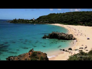Island Adventures Tours & Travel - Hawaii