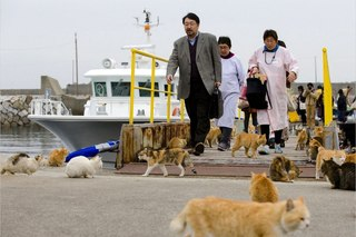 Остров аосима aoshima один из десятков