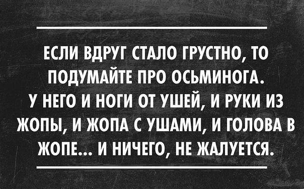 Костя Коломиец |