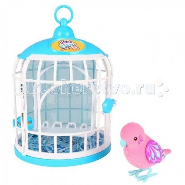 Интерактивная игрушка Little Live Pets Говорящая птичка в домике, Moose