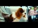 Стих из кинофильма Ёлки 3. Валентин Гафт - Пёс