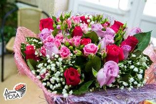 Донна роза абакан официальный сайт