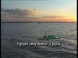 ГАЙ, ЗЕЛЕНИЙ ГАЙ — караоке Українська народна пісня Ukrainian folk song karaoke
