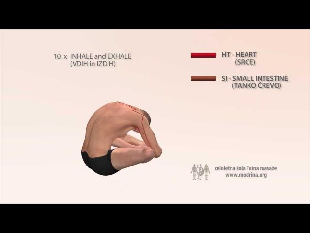 Exercise for meridians of HEART and SMALL INTESTINE - Vaja za odpiranje meridijana HT in SI