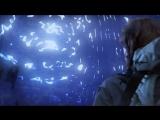 Звёздные врата Атлантида видео для выступления