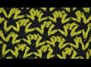 Узор для вязания крючком Польская Звезда • Урок вязания крючком • Estrella polaca tejido a...