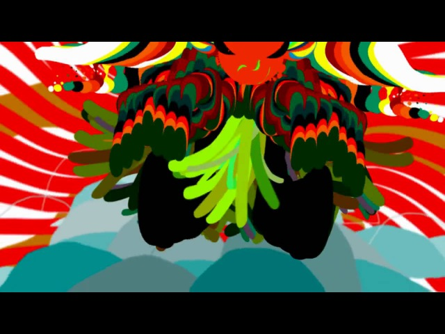 Ori Toor - ANIMAL COLLECTIVE -