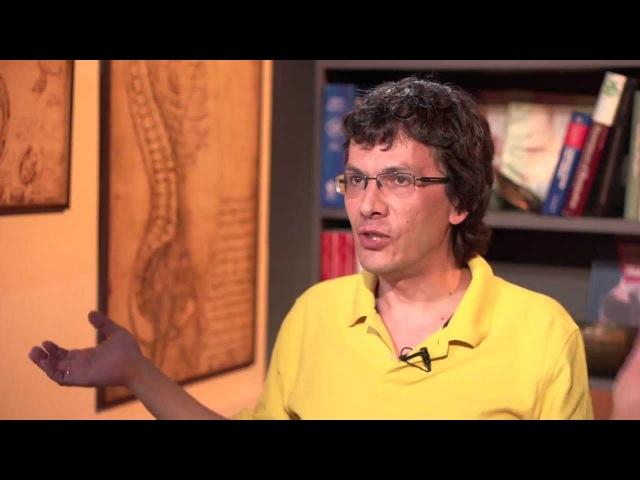 «Эволюция альтруизма» А. Марков.Авторская программа «Медицина в контексте».