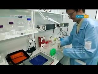 Қыздардың пәктігі жайлы  ДНК, тұқым қуалаушылық, т б