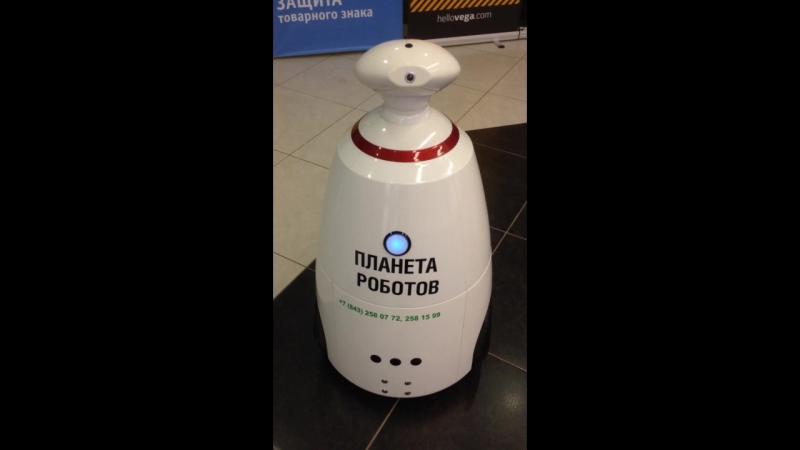 Знакомство с роботом R.Bot