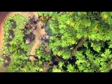 Тарзан размазня / 2012 / Мультфильм / Полная версия / HD 1080p