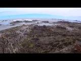 Прогулка по отливу (walk through the ebb)  Экшн-камера SONY HDR-AS10