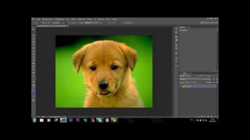5 Урок по Adobe Photoshop CS6 (Замена фона у картинки)