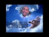 KeKe The Adopted Tabby Cat MAKES HISTORY! FIRST ANIMAL IN HIP HOP! FEAT LIL B !!!