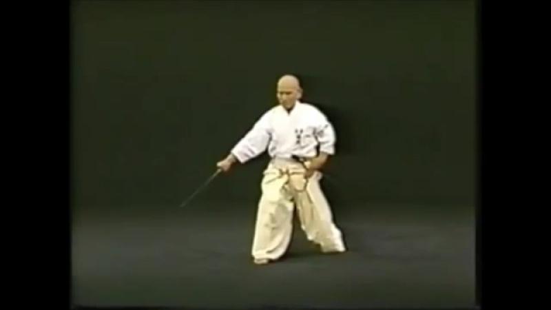 Hakuo Sagawa - Иайдо сэйтэй