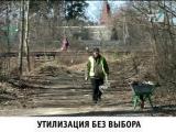 Новости Приморского района, выпуск от 16.04.2015