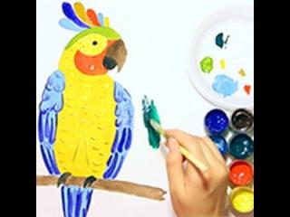 Как нарисовать попугая:how to draw a parrot::Урок рисования:drawing lesson
