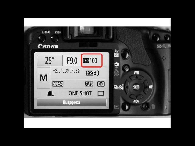 Уроки фотографии: Урок 1. Настраиваем камеру.