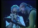 Jaco Pastorius &amp Toots Thielemans - Sophisticated Lady