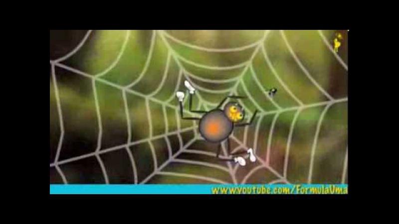 Почему пауки не попадают в свои сети мультфильмы для умных детей Формула Ума