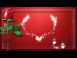 ФУТАЖ РОМАНТИКА сердечки и роза