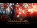 Relaxing Celtic Music Autumn Forest