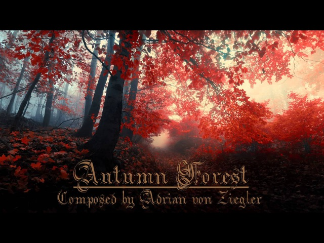 Relaxing Celtic Music - Autumn Forest