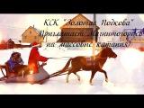 КСК Золотая Подкова Приглашает Магнитогорцев,на массовые катания)