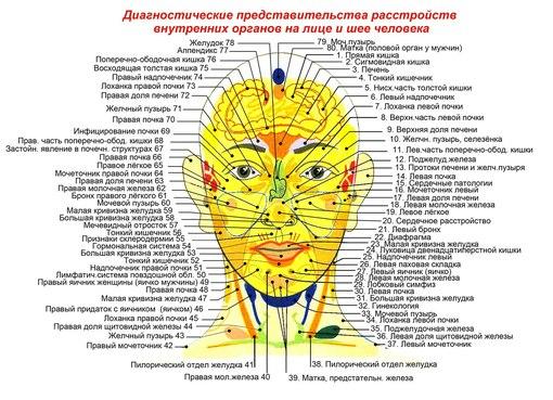 Где на теле человека расположены лимфоузлы