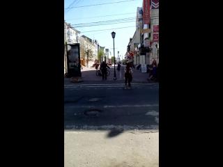 танец маленьких утят в исполнении тверского бомжа