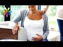 Проблемы беременности – Все буде добре. Выпуск 687 от 14.10.15